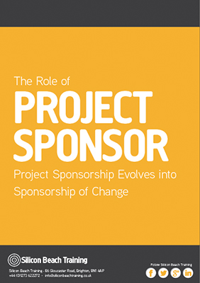 The Role of Project Sponsor